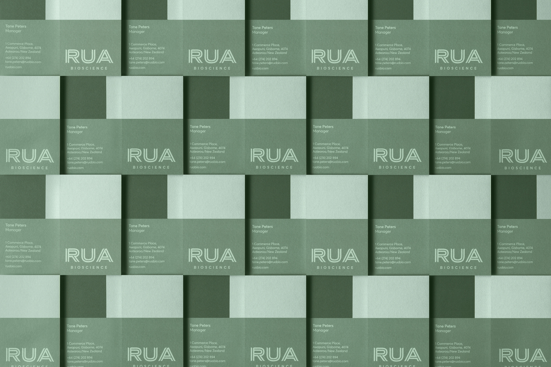 RUA B Nioscience 4