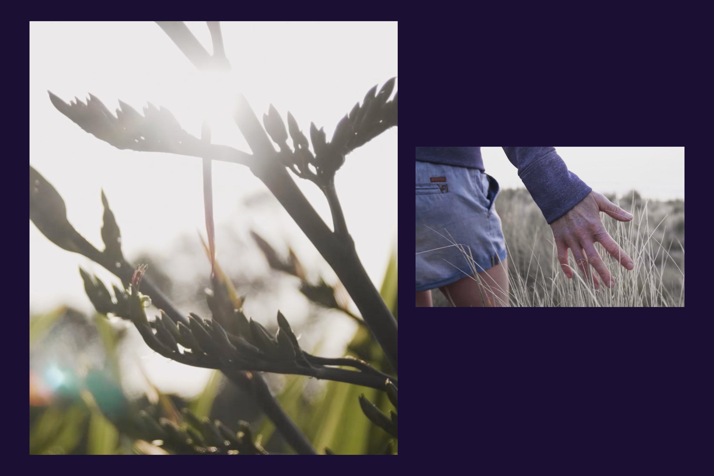 TT Motion Brand Video2