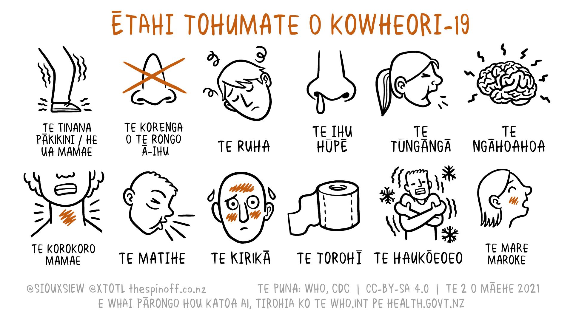 COVID 19 Symptoms Māori